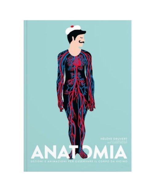 anatomia-sezioni-e-animazioni-ippocampo