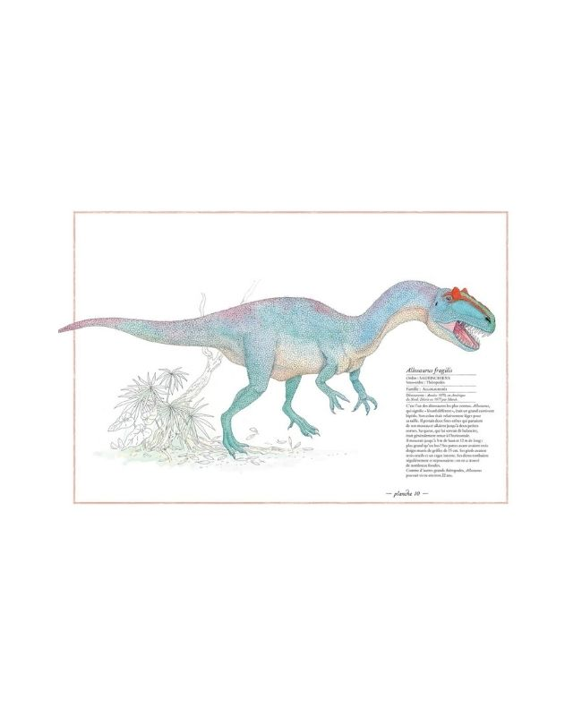inventario-illustrato-dei-dinosauri-ippocampo3