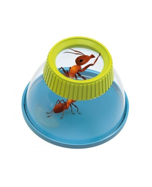 lente-insetti-buki